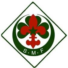 Logo desScouts